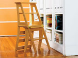 Step Stool from Popular Mechanics